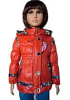 Куртка с оборочкой, фото 3