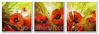 Картина для рисования Турбо Триптих Маковый цвет  50 х 150 см