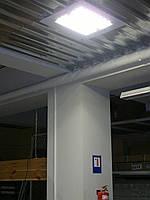 Bozon Lightup – 150