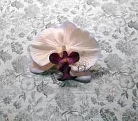Орхидея голова 10,5 см