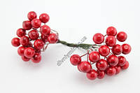 Ягода декоративная, соцветие 40 ягод