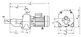 Центробежный насос Euroaqua JA150 (2 крыльчатки), фото 3