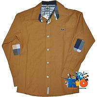 686619e8016 Рубашки LACOSTE оптом в Украине. Сравнить цены