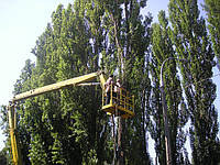 Срезание деревьев с автовышки