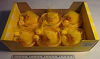 Пасхальные цыплята в гнезде