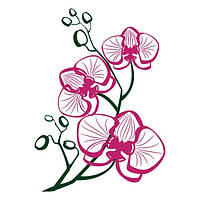 Виниловая Наклейка Glozis на прозрачной основе Orchid 70х50 см
