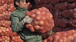 Украину будут кормить дешевым китайским луком