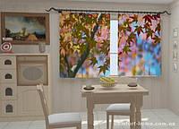 Фотошторы Листья клена в кухне 1,5м х 2,5м