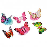 Интерактивная бабочка Little Live Pets My Butterfly, фото 1