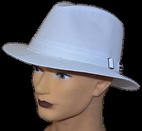 Мужские шляпы.