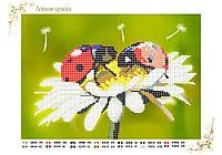 """Схема для бисера цветы ромашки """"Летние краски"""", А4"""