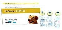 Для профилактики лептоспироза!
