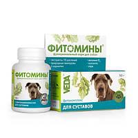 ФИТОМИНЫ® с фитокомплексом для суставов для собак функциональный фитоминеральный комплекс, 100таб