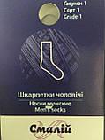 Носки мужские Смалий демисезонные арт302д  размер 31, фото 3