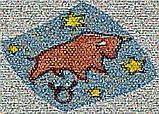 Мозаїка з фото, фото 3