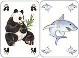 Карткова гра Djeco Занімалка (DJ05153), фото 3
