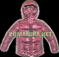 Детская весення, осенняя термокуртка р 98 с капюшоном, утепленная, подкладка полиэстр ТМ Lefties 3036 Бордовый