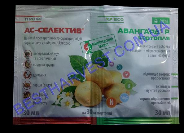 АС-Селектив + Авангард Картошка 30+30 мл, оригинал, фото 2