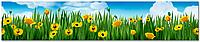 Стеклянный фартук для кухни - скинали Тюльпаны Цветы