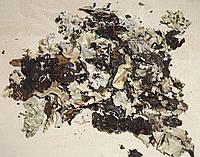 Сушеный черный мох 10 грам