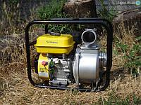 Мотопомпа Sadko WP-8030 (60 м³/час), фото 1