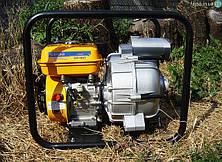 Мотопомпа для грязной воды Sadko WP-80T (45 м³/час)