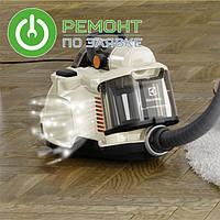 Многофункциональный пылесос Electrolux – SilentPerformer Cyclonic
