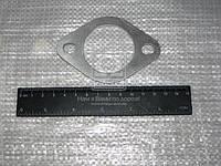 Прокладка коллектора выпускного КАМАЗ ЕВРО (покупн. КамАЗ). 7403.1008050