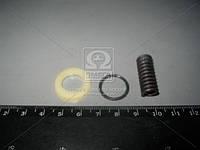 Ремкомплект деталей для ремонта ТНВД (Замена плунжерной пары) (Россия). 60-1111001