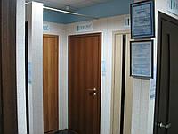 Двери Verto Идея 1 цвет Орех «Симплекс»