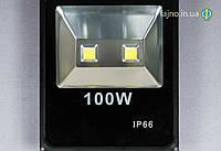 ЛЕД прожектор Белсон Slim (100 Вт, 2 диода)