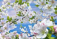 Фотообои *Весна* 194х268