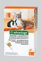 Advantage 40 (Адвантейдж) Капли от блох для кошек и кроликов весом до 4 кг