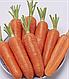 Семена моркови Проминенс F1 100.000 семян TAKI SEEDs, фото 2