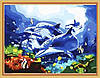 """Раскраска картина по номерам """"Дельфины с коралловыми рыбками"""" 40х50см"""