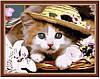 "Картина раскраска по номерам ""Котенок в шляпе"", MG177, 40х50см"