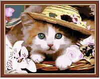 """Картина раскраска по номерам """"Котенок в шляпе"""", MG177, 40х50см, фото 1"""