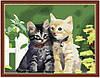 """Картина раскраска по номерам """"Котята"""" 40х50см"""
