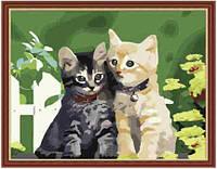 """Картина раскраска по номерам """"Котята"""" 40х50см, фото 1"""