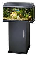 Аквариум JUWEL REKORD (Ювель Рекорд) 600 черн., аквариум 63л.