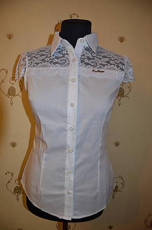 Блуза 10823