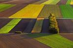 Донецкая область приготовилась к посеву сельскохозяйственных культур.