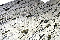 Керамическая плитка FOREST Интеркерама