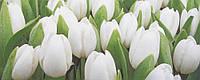 Плитка Атем Ялта настенная облицовочная Atem Yalta Tulip Mini W 200х500 белый