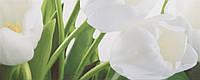 Плитка Атем Ялта настенная облицовочная Atem Yalta Tulip 2 W 200х500 белый