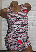 Комплект шорты + майка борцовка