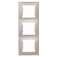 Рамка Schneider-Electric Sedna 3-поста вертикальна титан. SDN5801368