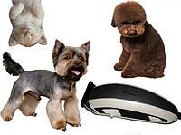 Триммер для стрижки собак и кошек Surker HC-585 Pet Hair Clipper - 6 насадок