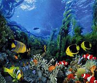 Фотообои *Подводное царство* 201х242