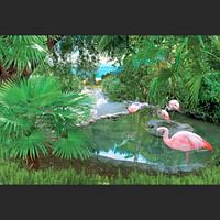 Фотообои *Розовые фламинго* 196х140